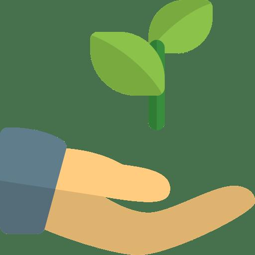 Main avec plante dedans