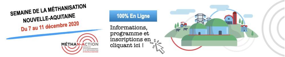 bandeau-site-web.001